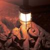 Contes de la nuit des temps