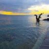 Mai sur le rivage à Vevey